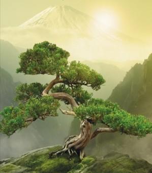 zen-mountain